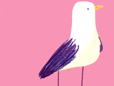 seagull 3 seagull bird animal cute color illustration digital photoshop texture colour