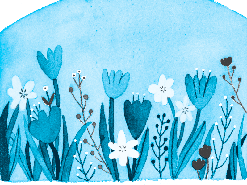 flowers field blue cyan flora photoshop flower illustration