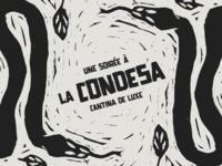 Une soirée à la Condesa