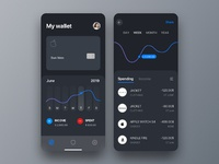 Personal wallet   concept