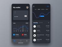 Personal Wallet App - concept