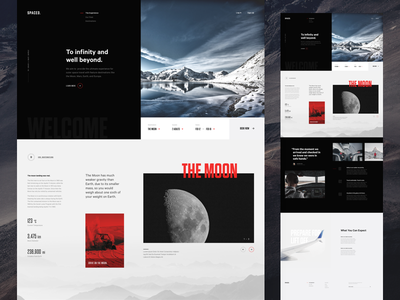 SPACED Website Concept typography layout ux ui travel spacedchallenge spaced space moon website design dark