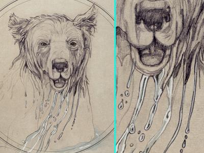 Bathing bear thumb