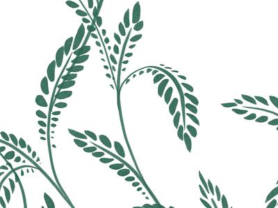 Green Leaves Illustration brush pen texture procreate simple white plant illustration illuatration beautifull leaves green plant