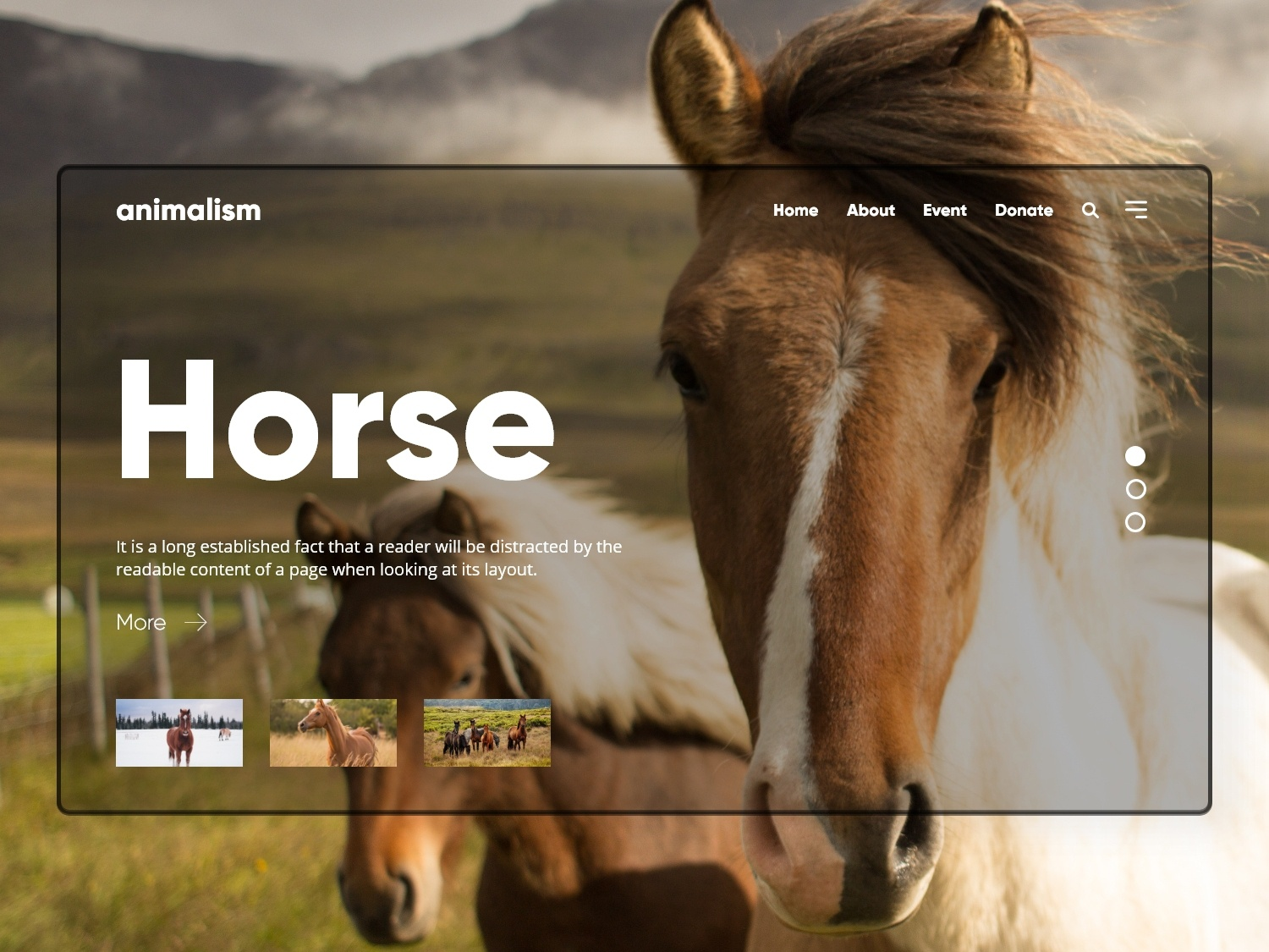 Animalism - Wild Animal website concept discovery channel national geographic website web prototype interaction design web design ui design ux concept landing page