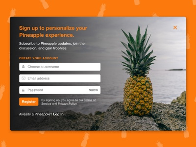 Sign Up Modal daily ui modal sign up registration
