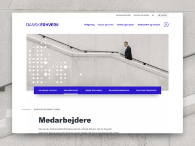 Dansk Erhverv webdesign identity branding