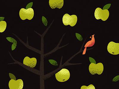 Apple Tree illustration texture tree cardinal bird leaves