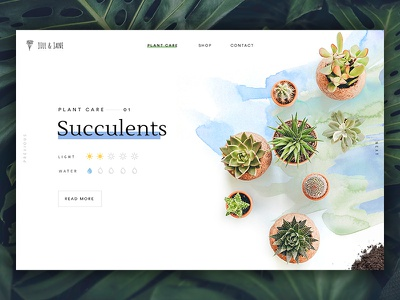 Plant Guide clean header minimal plant serif simple typography ui ux website web design