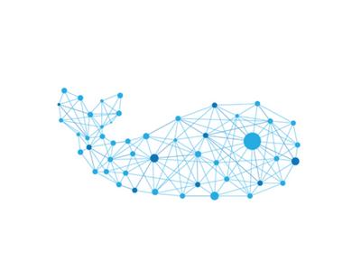 Data Culture  nonprofits analytics whole whale blue whale data culture culture data