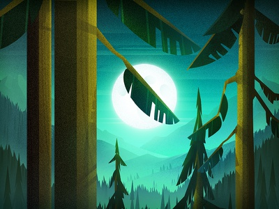 Moonlight nighttime hill mountain evergreen tree forest moon
