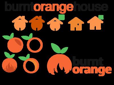The search for a logo. BurtOrangeHouse