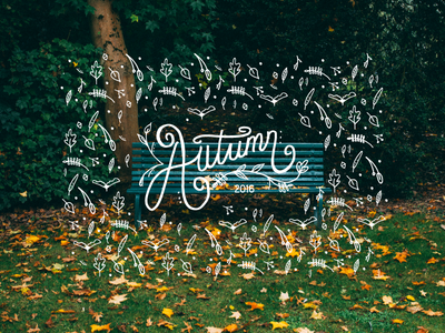 Autumn Hand Lettering wearedhd photography illustration graphicdesign typography handlettering
