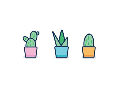 Plants vector graphicdesign illustration cactus plants