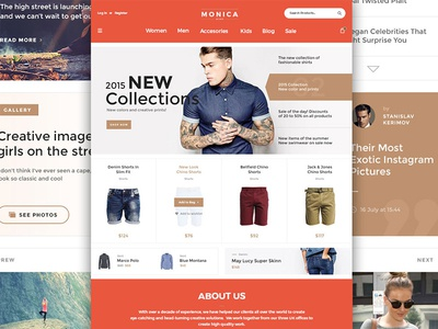 Monica Web UI Kit Freebie