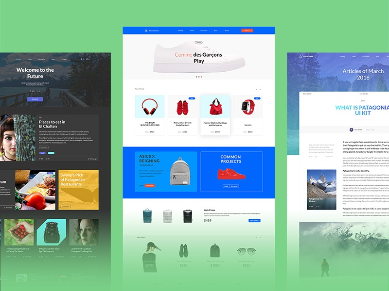 Patagonia sample websites by Visual Hierarchy on Dribbble