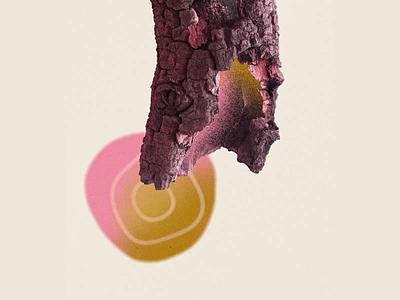 Observando el entorno parte 2 loop texture draw ilustracion motion colors illustration animation debut 2d