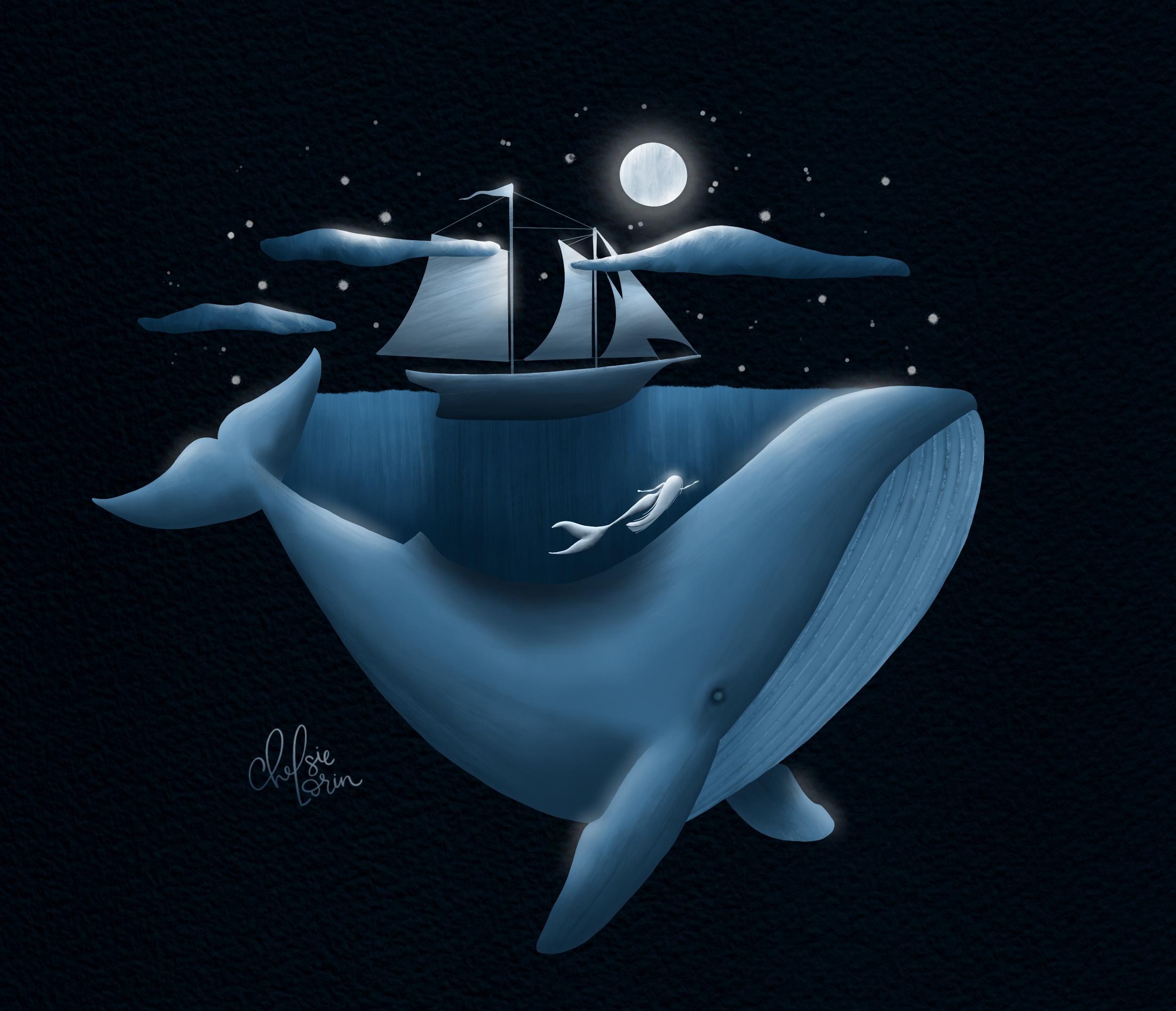 Dreamworld whale