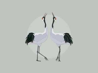 Japanese Crane works illustrator
