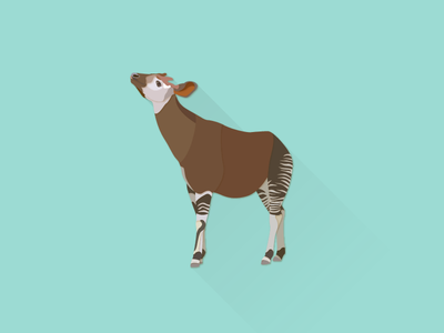 Okapi works illustrator