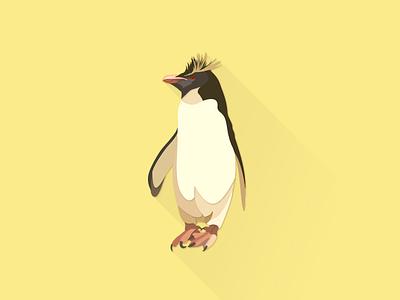 Rockhopper Penguin works illustrator