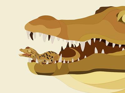 Crocodile Hatchling works illustrator