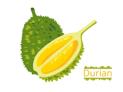 Durian gourmet food exotic tropical asia fruit durian