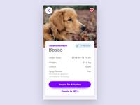 Adoption App