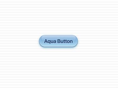 Aqua Button cheetah apple button osx mac aqua