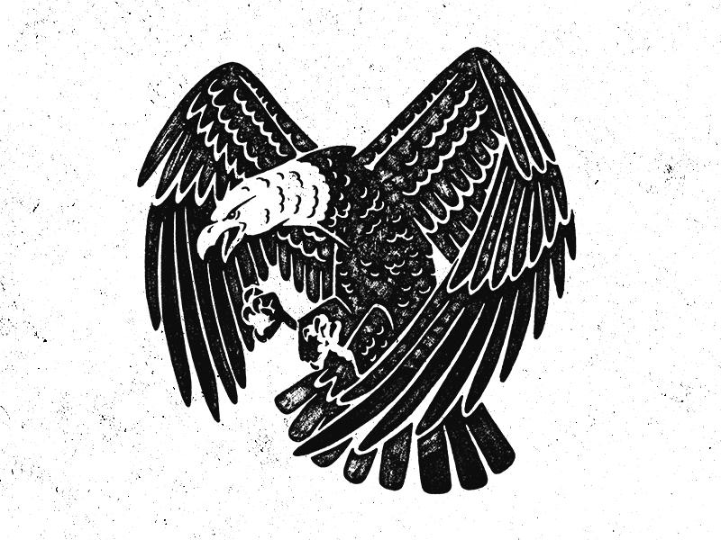 Eagle illustration eagle
