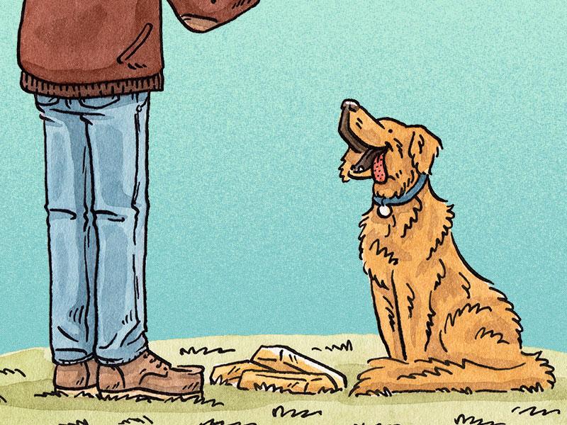 Golden Retriever people animals fetch gold golden retriever dog editorial mixed media illustration