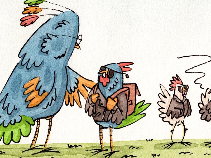 Rare Birds chicken rooster animals birds editorial mixed media illustration