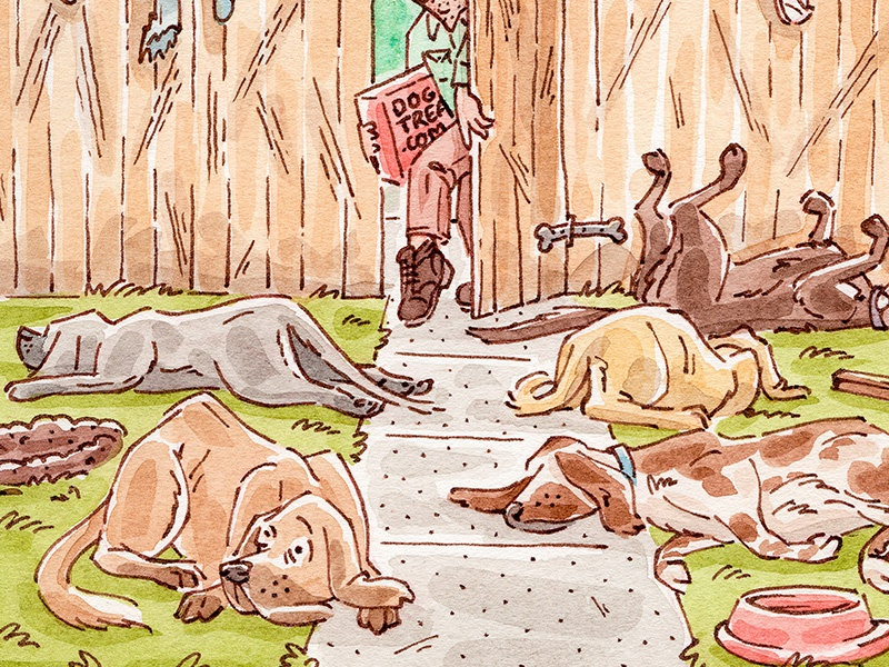 Dog Treats pen and ink watercolor people dog dogs animals editorial mixed media illustration