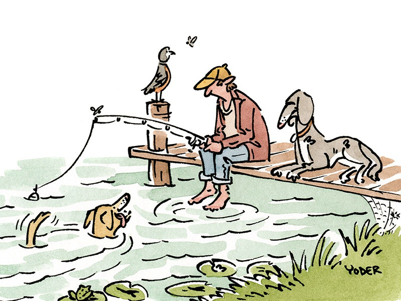 Fishing outdoors fishing pen and ink watercolor editorial dog animals illustration