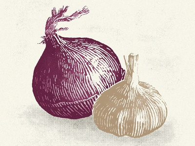 Onion Garlic Insta restaurant culinary cooking ingredients garlic onion vegetable vegetables food etching engraving pen and ink pen illustrations illustration