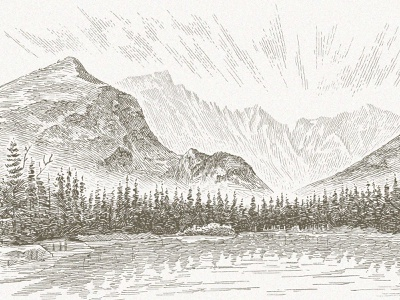 Longs Peak landscape outdoors trees forest nature mountains line art line work linework line traditional pen and ink