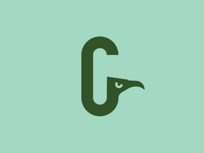 Bird Exploration monogram logo bird logo vultur condor eagle branding birds bird