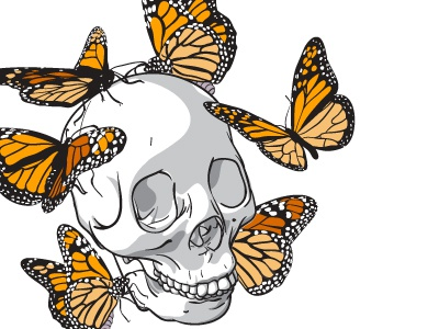 Monarch skull monarch butterflies human insects vector illustration jessica buchanan wichita kansas waccom