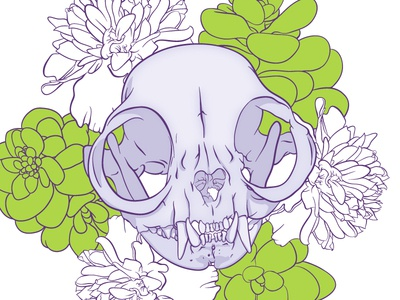 Purple Persian purple persian skull marigold jelly bean succulent jellybean succulent bones jess jessica buchanan vector anatomy teeth eye socket flowers wichita