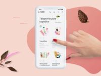 Concept Mobile Site