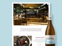 Trapiche wines 2017