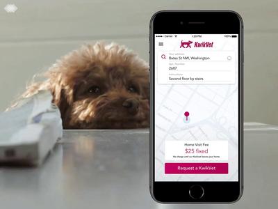🐶🐱📱KwikVet  app startup iphone interface map ios design animal veterinary on-demand ux app dog cat