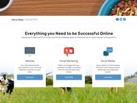 Pet Store Websites Redesign