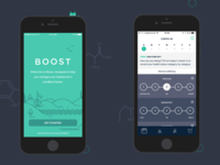 Boost - Data Entry & Welcome screens