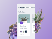 Collect Trends - UI exploration