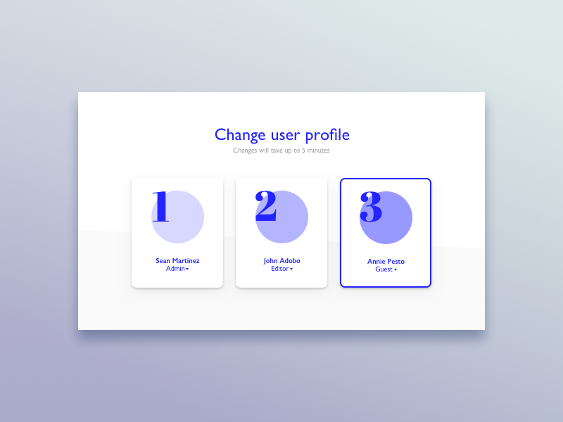 62 - select user type profile user type select blue