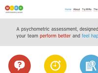 MiRo Assessment