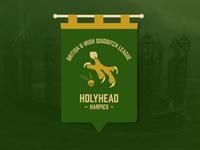 Holyhead Harpies Quidditch Banner