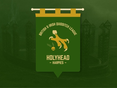 Holyhead Harpies Quidditch Banner quidditch harry potter pennant dribbbleweeklywarmup