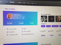 User Profile - Analytics